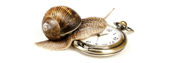 Does Your Business Suffer from Slow Workflows?, RYAN Business Systems
